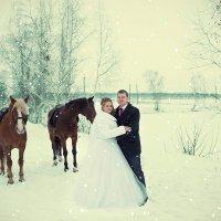 Прекрасные мгновения зимы :: Марина Демченко
