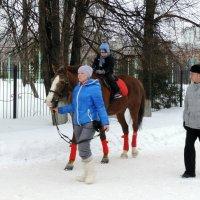 Катание на лошадке :: bemam *