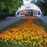 Куда ведет дорожка из цветов? :: Татьяна Кудрина