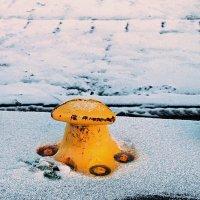 Желтая тумба :: Михаил Лобов (drakonmick)