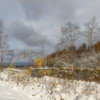 снежный октябрь :: Galina
