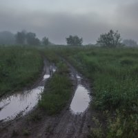 После ночного дождя :: Валентин Котляров