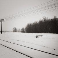 Зимняя тишина :: Андрий Майковский