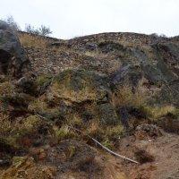 Камень и трава :: Виктория Большагина