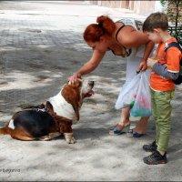 Невозможно пройти мимо... :: Anna Gornostayeva