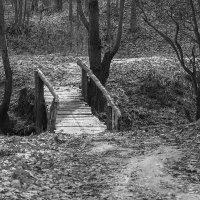 Старый мостик :: Saloed Sidorov-Kassil