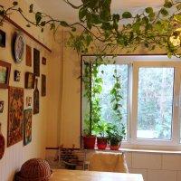 Кухня. Живой потолок :: Tata Wolf