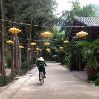 Вьетнам :: Татьяна Нижаде