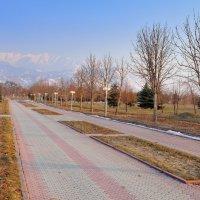 Последний день зимы :: Андрей Гомонов