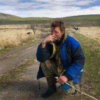 Пастух :: Игорь Чубаров