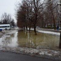 Здравствуй, Весна! :: Oleg4618 Шутченко
