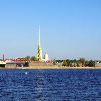 Петропавловская крепость :: Валерий Новиков
