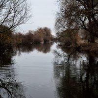 Река :: Александр Тышко
