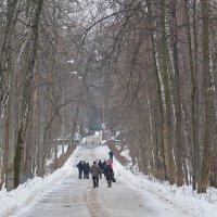 Зима. Парк. Последние дни февраля. :: Геннадий Александрович