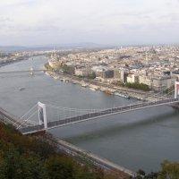 Мосты над Рекой Дунай :: Андрей ТOMА©