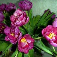 Весенние цветы! :: Лариса Корженевская