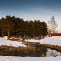 Река Сухая :: Дмитрий Чулков