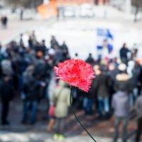 Митинг оппозиции. :: Аркадий Шведов