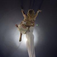 Воздушные гимнасты 5 :: Алексей Королёв
