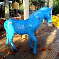 Синяя лошадь. Кафе :: Tata Wolf