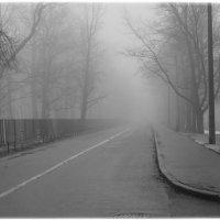 Курс на туман) :: Lesya Vi