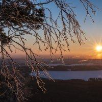 frosty morning in February :: Dmitry Ozersky