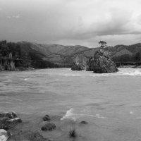 Река Катунь :: Николай Воробьёв