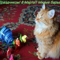 Не донёс немного... :: Елена Федотова