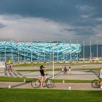 Сочи-Адлер. Олимпийский парк. :: Евгений Поляков