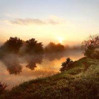 Июньское утро :: sergej-smv
