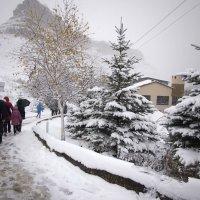 Северный Кавказ, первый снег. :: Юрий Приходько