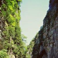 Абхазия :: Анна Судьярова