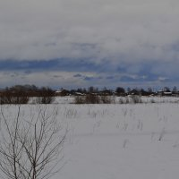 Зимнее поле :: Наталья Левина