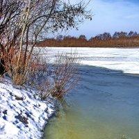 И просыпается река... :: Лесо-Вед (Баранов)