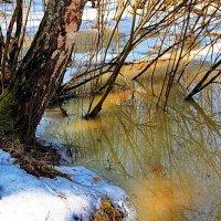 Уже всесильна талая вода... :: Лесо-Вед (Баранов)