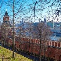 Весна в Кремле 4 :: Galina