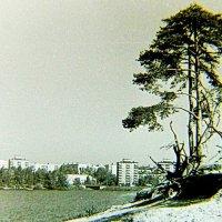 В Сормовском парке. 1967 год :: alek48s