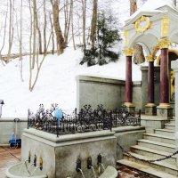 Талежский живоносный святой источник :: Светлана Лысенко