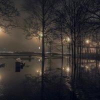Фонари в тумане :: Valeriy Piterskiy