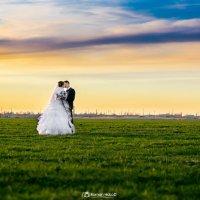 Свадьба :: Роман Холод