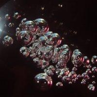 Пузыри :: Ксения Загайнова