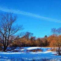 под снегом плёс речушки нашей.... :: Юрий