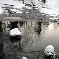 Река Обла :: Агриппина