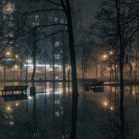 Туманная оттепель :: Valeriy Piterskiy