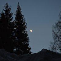 Лунная ночь :: Дмитрий Стрельников