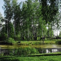 Река Руза :: Борис Соловьев