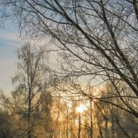 Первое весеннее утро #2 :: Алексей Масалов