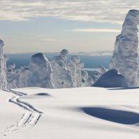 Снежные изваяния :: Max Golovanov