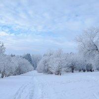 зима уходит и оставляет следы :: Елена Ворошина