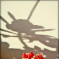 Распускается цветочек :: Лидия (naum.lidiya)